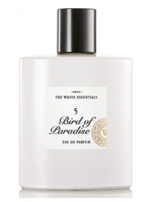 5 Bird Of Paradise Jardin De Parfums