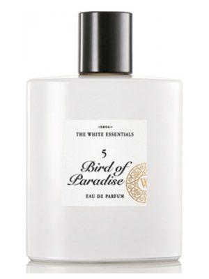 5 Bird Of Paradise Jardin De Parfums