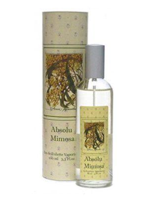 Absolu Mimosa Provence & Nature