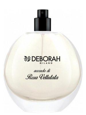 Accordo di Rosa Vellutata Deborah
