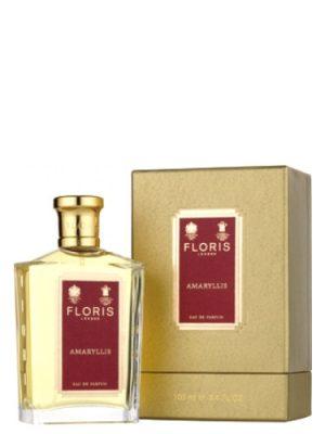 Amaryllis Floris