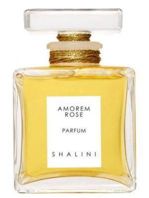 Amorem Rose Shalini