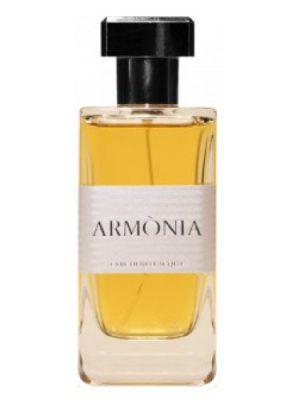 Armonia Cerchi Nell'Acqua