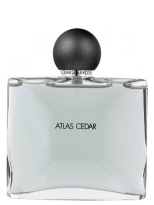 Atlas Cedar Jean Charles Brosseau
