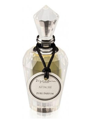 Attache Signature Fragrances