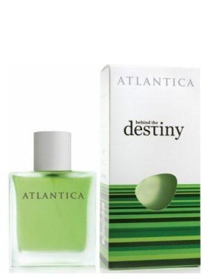 Behind The Destiny Dilis Parfum