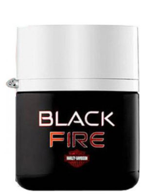 Black Fire Harley Davidson