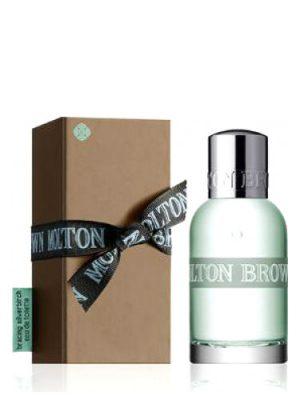Bracing Silverbirch Molton Brown