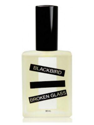 Broken Glass Blackbird