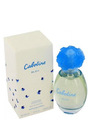 Cabotine Bleu Gres