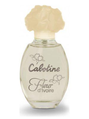 Cabotine Fleur d'Ivoire Gres