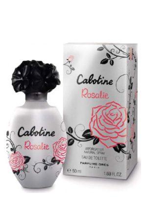 Cabotine Rosalie Gres