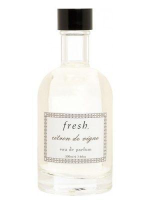 Citron de Vigne Fresh