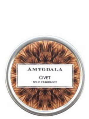 Civet Amygdala