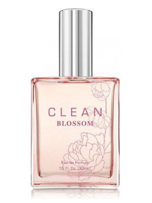 Clean Blossom Clean
