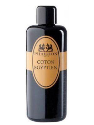 Coton Egyptien Phaedon