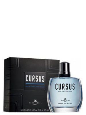 Cursus Arno Sorel