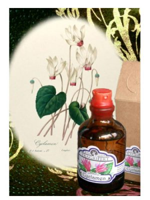 Cyclamen Fragrifert Parfumeur