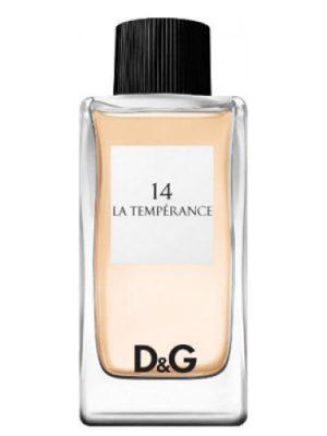 D&G Anthology La Temperance 14 Dolce&Gabbana