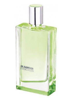 Evergreen Jil Sander