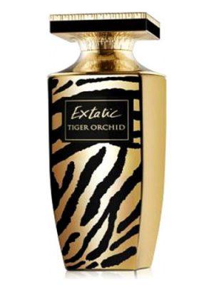Extatic Tiger Orchid Pierre Balmain