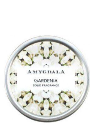 Gardenia Amygdala