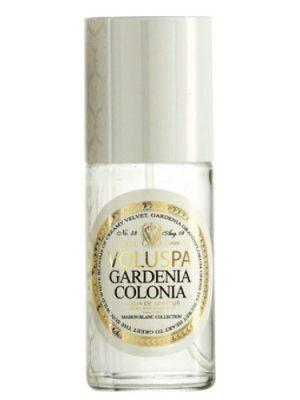 Gardenia Colonia Voluspa