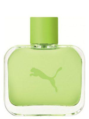 Green Puma