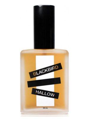Hallow Blackbird