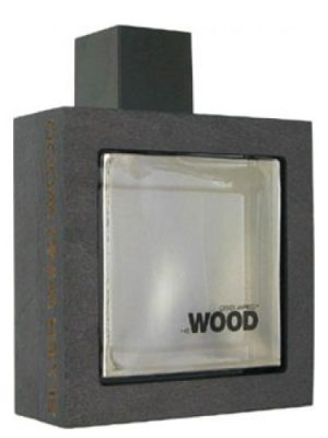 He Wood Silver Wind Wood DSQUARED²