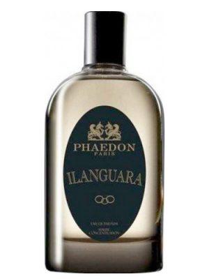 Ilanguara Phaedon