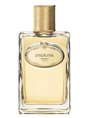 Infusion d'Iris Eau de Parfum Absolue Prada