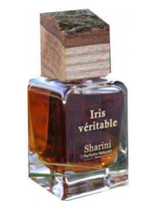 Iris Veritable Sharini Parfums Naturels