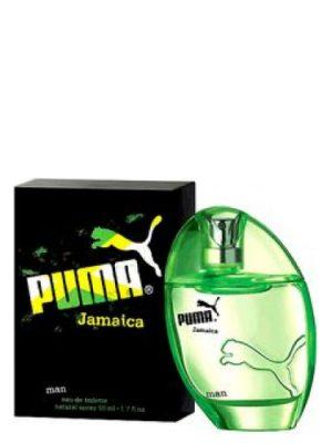 Jamaica Man Puma