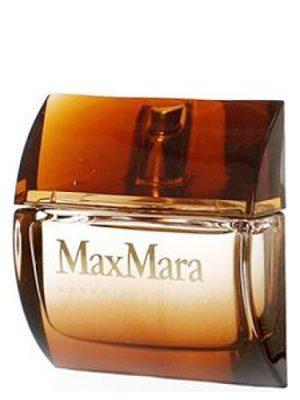 Kashmina Touch Max Mara