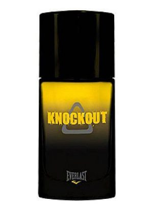 Knockout Everlast