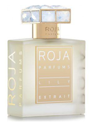 Lily Roja Dove