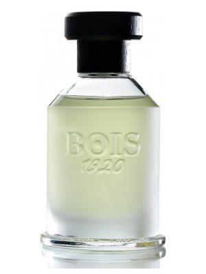 Magia Bois 1920