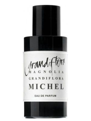 Magnolia Grandiflora Michel Grandiflora