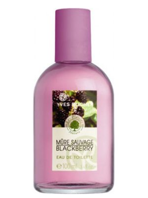 Mure Sauvage Yves Rocher