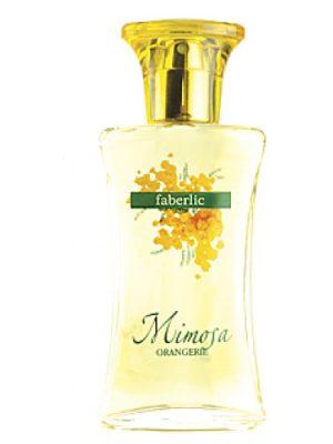 ORANGERIE Mimosa Faberlic
