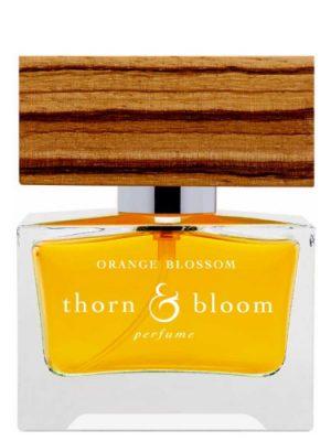 Orange Blossom Thorn & Bloom