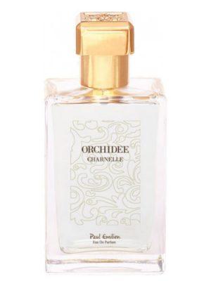 Orchidée Charnelle Paul Emilien