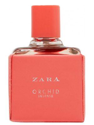 Orchid Intense 2018 Zara