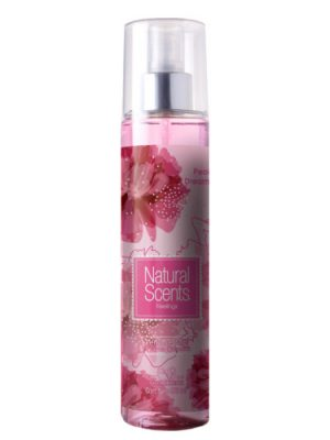 Peony Dreamer Natural Scents