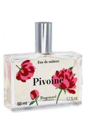 Pivoine Fragonard