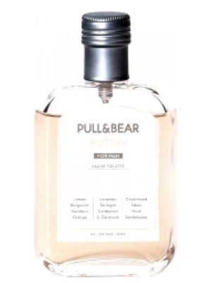 Potion For Man Pull and Bear