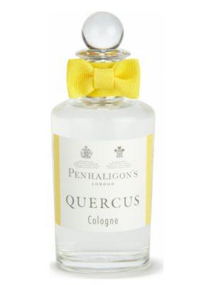 Quercus Penhaligon's