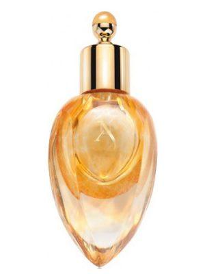 Richwood Perfume Extract Xerjoff