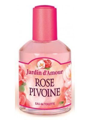 Rose Pivoine Jardin d'Amour